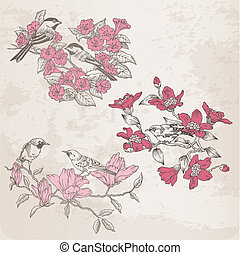 -, plakboek, vector, bloemen, vogels, illustraties, ontwerp, retro