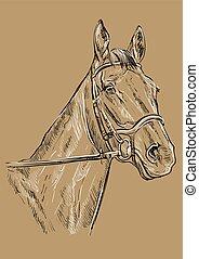 21, bruin paard, verticaal