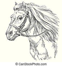 21, verticaal, paarde, vector