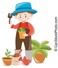 aanplant, klei, boompje, tuinman, potten