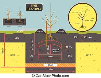 aanplant, plant, concept, illustration., voorbereiden, terrein, boompje, vector