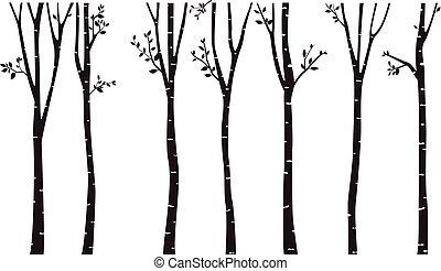 achtergrond, boompje, silhouette, berk