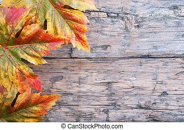 achtergrond, herfst
