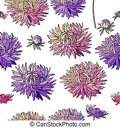 asters., floral, textuur, model, seamless, ontwerp, eindeloos