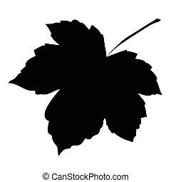 beeld, silhouette, achtergrond., vector, vrijstaand, witte , illustratie, esdoorn blad