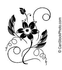 black , model, bloem, witte