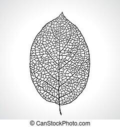 blad, isolated., macro, illustratie, vector, black , natuurlijke