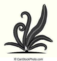 blad, varen, silhouette, tropical.