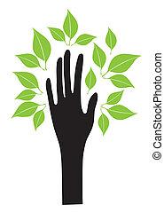 bladeren, hand