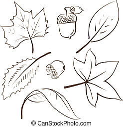 bladeren, herfst, schets