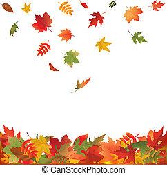 bladeren, het vallen, herfst