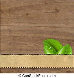bladeren, hout, groene achtergrond