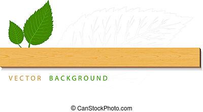bladeren, hout, groene