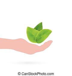 bladeren, ontwerp, hand