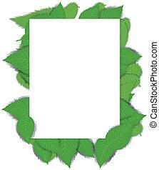 bladeren, papier, groene, pagina, achtergrond