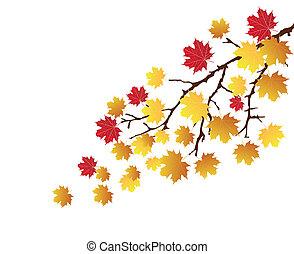bladeren, tak, herfst
