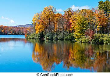 blauwe kam, prijs, weerspiegelde, oppervlakte, meer, gebladerte, herfst, snelweg
