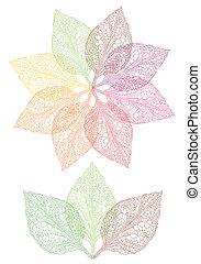 bloem, blad, kleurrijke