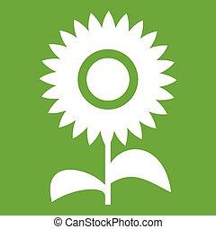 bloem, groene, pictogram