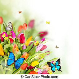 bloemen, lente, vlinder, mooi
