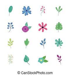 bloemen, vellen, bundel, lente, zestien