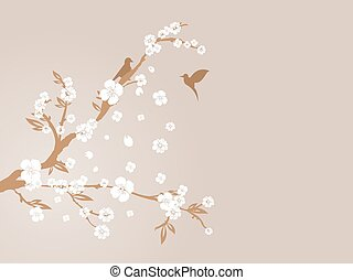 blossom , kers, silhouette