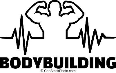 bodybuilding, hartslag, pols