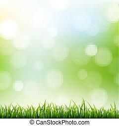 bokeh, gras, grens, achtergrond
