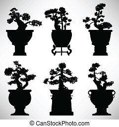 bonsai, plant, bloem, boompje, pot