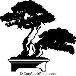bonsai, vector, silhouette, illustratie, boom., black , bonsai.