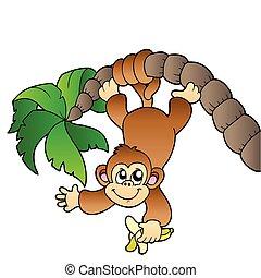 boompje, palm, aap, hangend