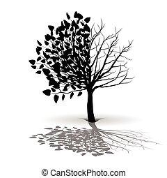 boompje, plant, silhouette