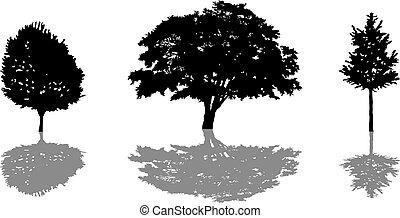 boompje, set, silhouette, shadow., pictogram