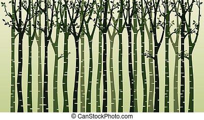 boompje, silhouette, groene achtergrond, berk
