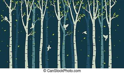 boompje, silhouette, vogels, achtergrond, berk