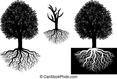 boompje, vrijstaand, wortels