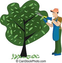 boompje, witte , achtergrond., vector, tuinman, illustratie, garneersel