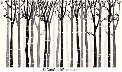 boompje, witte , silhouette, achtergrond, berk