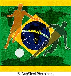 brazilie, 2014