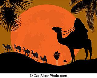 caravan, woestijn
