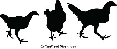 chicken, vector, silhouette