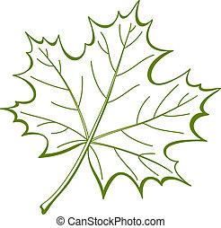esdoorn, blad, canadees, pictogram
