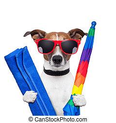feestdagen, dog, zomer