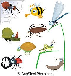 gekke , insect, set, #2