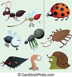 gekke , insect, set