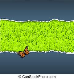 gescheurd, vlinder, papier, gras
