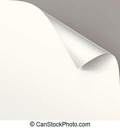 grijs, vector, op, vrijstaand, papier, achtergrond, hoek, afsluiten, witte , schaduw, spotten, gekrulde