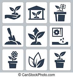 groeiende, plant, vector, set, iconen