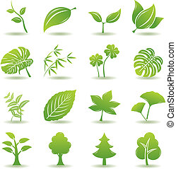 groene, set, blad, iconen