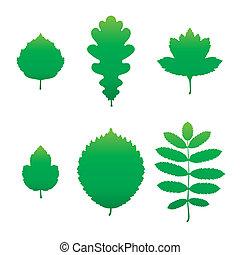 groene, silhouettes, blad